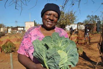 Winnie Mabaso Foundation
