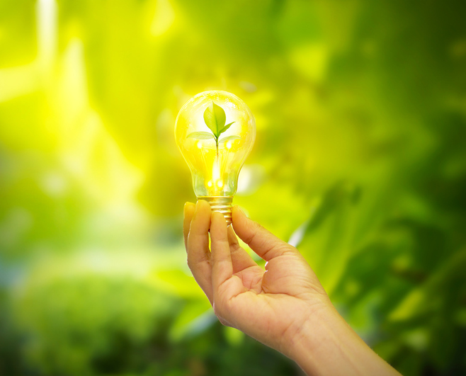 hand holding a light bulb with energy and fresh green leaves inside on nature background, soft focus. garden solutions