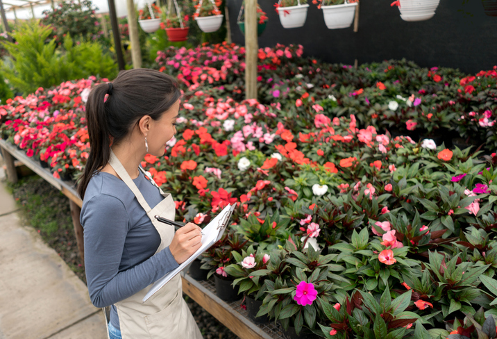 Latin American woman working at a garden center and making an inventory of the plants. August Garden checklist