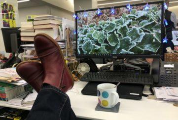 Feet on the desk!