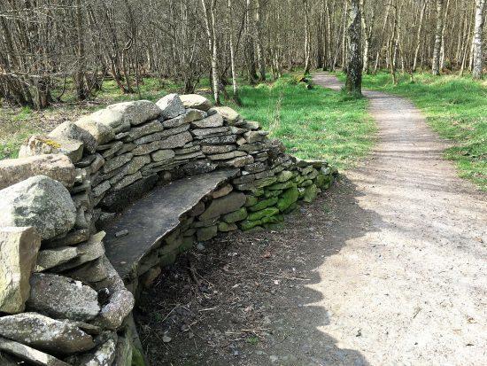 Community woodland