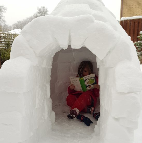 world book day igloo