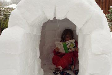 world book day igloo